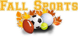 fall sports balls